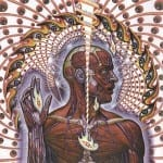 Cover: Tool - Lateralus
