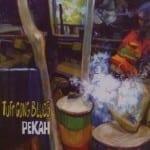 Cover: Pekah - Tuff Gong Blues