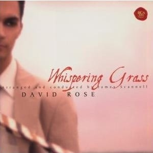 Interview – David Rose › venue music c6f8f333b3a5