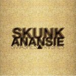Cover: Skunk Anansie - Smashes And Trashes