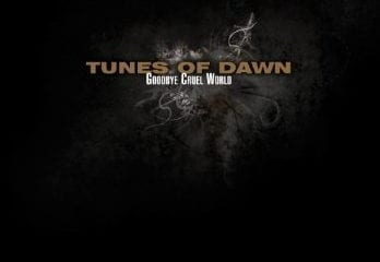 Cover: Tunes Of Dawn - Cruel World