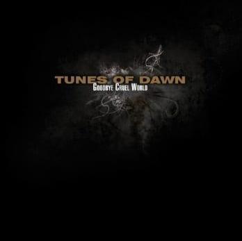 Cover: Tunes Of Dawn - Cruel World