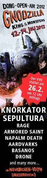 Dong Open Air 2012 - official Flyer