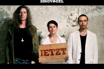 Singvøgel - JETZT